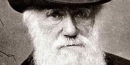 Falsifying Darwin