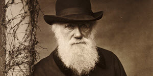Darwin Was Right:  Information and the Collapse of Macroevolutionary Theory