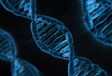 God, Family, and Genetics – A Biblical Perspective